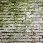 Muren onderkappen: prijsoverzicht en werkwijze